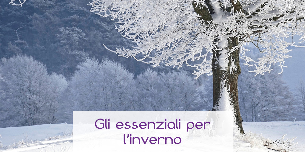 Gli essenziali per l'inverno